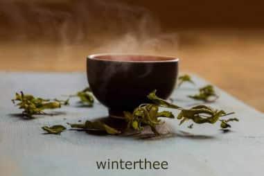 winterthee gember