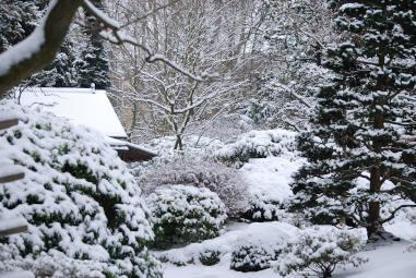 kruidentuin winter front
